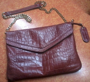 This is a purse from Cynthia Rowley.  I got this on clearance at TJ Maxx for $25.00.